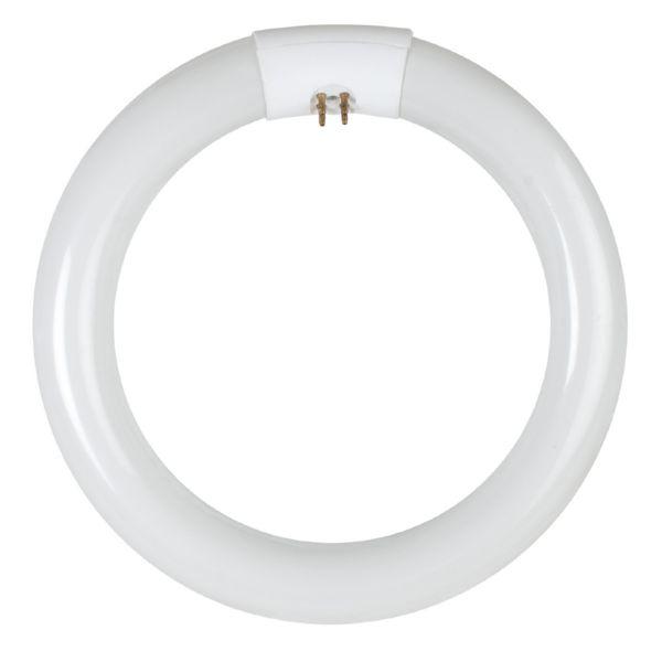 Tubo fluorescente trifósforo circular.